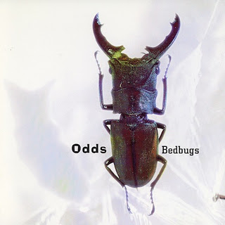 Odds – Bedbugs